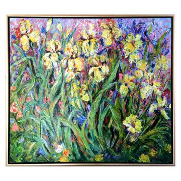 Schwertlilien02